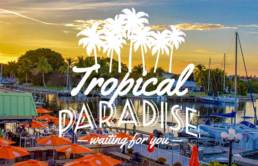 Tropical Paradise - Waiting for you.